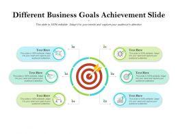 Different Business Goals Achievement Slide