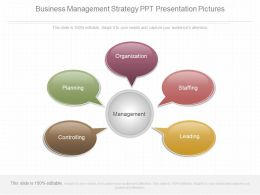 Different Business Management Strategy Ppt Presentation Pictures