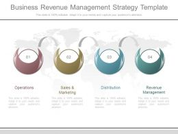 Different Business Revenue Management Strategy Template