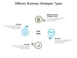 Different Business Strategies Types Ppt Powerpoint Presentation Gallery Cpb