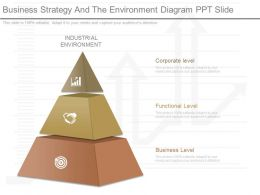 Different Business Strategy And The Environment Diagram Ppt Slide