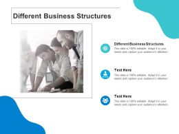 Different Business Structures Ppt Powerpoint Presentation Layouts Clipart Cpb