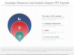 different_campaign_response_lead_analysis_diagram_ppt_example_Slide01