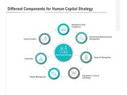 Different Components For Human Capital Strategy