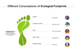 Different Consumptions Of Ecological Footprints