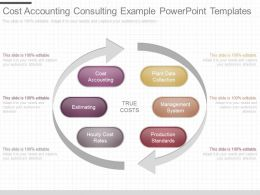 Different Cost Accounting Consulting Example Powerpoint Templates