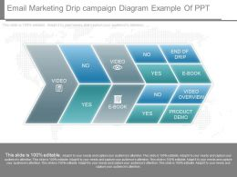 Different Email Marketing Drip Campaign Diagram Example Of Ppt