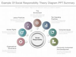 Different Example Of Social Responsibility Theory Diagram Ppt Summary