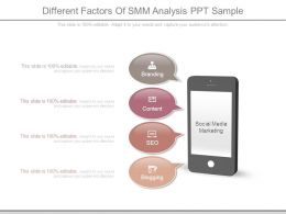 Different Factors Of Smm Analysis Ppt Sample