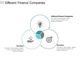 Different Finance Companies Ppt Powerpoint Presentation Gallery Deck Cpb
