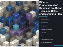Different Fundamental Of Business Are Brand Team And Sales And Marketing Plan