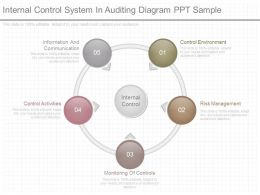 Different Internal Control System In Auditing Diagram Ppt Sample