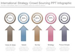 Different International Strategy Crowd Sourcing Ppt Infographic