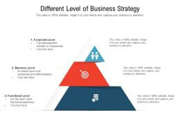 Different Level Of Business Strategy