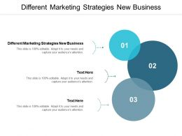 Different Marketing Strategies New Business Ppt Powerpoint Presentation Slides Mockup Cpb