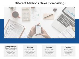 Different Methods Sales Forecasting Ppt Powerpoint Presentation Summary Show Cpb