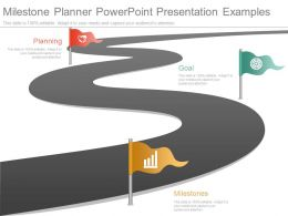 Different Milestone Planner Powerpoint Presentation Examples