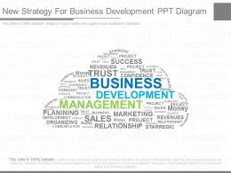 Different New Strategy For Business Development Ppt Diagram