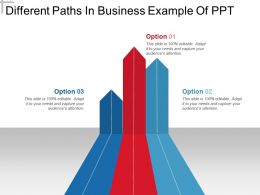Different Paths In Business Example Of Ppt