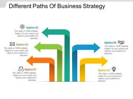 Different Paths Of Business Strategy Powerpoint Ideas