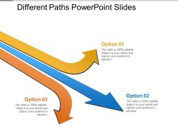 Different Paths Powerpoint Slides