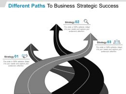 Different Paths To Business Strategic Success Powerpoint Presentation