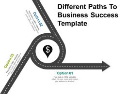 Different Paths To Business Success Template Powerpoint Show