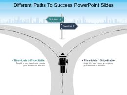 Different Paths To Success Powerpoint Slides