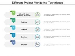 Different Project Monitoring Techniques Ppt Powerpoint Presentation Layouts Visual Aids Cpb