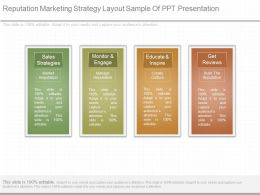 Different Reputation Marketing Strategy Layout Sample Of Ppt Presentation