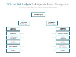 Different Risk Analysis Techniques In Project Management