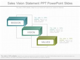 Different Sales Vision Statement Ppt Powerpoint Slides