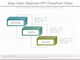 Different Sales Vision Statement Ppt Powerpoint Slides