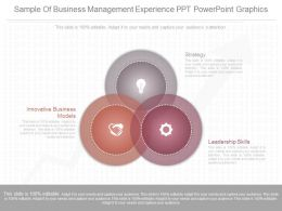 Different Sample Of Business Management Experience Ppt Powerpoint Graphics