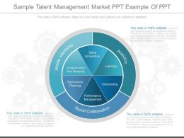 Different Sample Talent Management Market Ppt Example Of Ppt