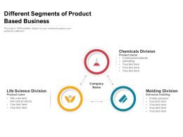 Different Segments Of Product Based Business