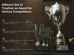 Different Set Of Trophies As Award For Various Competitions