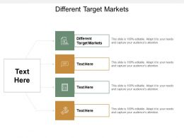 Different Target Markets Ppt Powerpoint Presentation Gallery Example Topics Cpb