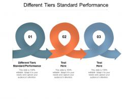 Different Tiers Standard Performance Ppt Powerpoint Presentation Infographic Template Outline Cpb