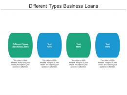 Different Types Business Loans Ppt Powerpoint Presentation Gallery Show Cpb