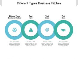 Different Types Business Pitches Ppt Powerpoint Presentation Show Themes Cpb