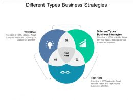 Different Types Business Strategies Ppt Powerpoint Presentation Professional Maker Cpb
