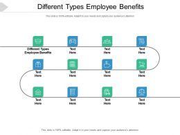 Different Types Employee Benefits Ppt Powerpoint Presentation Infographics Graphic Images Cpb