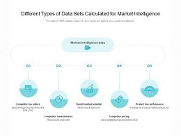 Different Types Of Data Sets Calculated For Market Intelligence