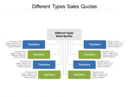 Different Types Sales Quotas Ppt Powerpoint Presentation Layouts Rules Cpb