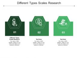 Different Types Scales Research Ppt Powerpoint Presentation Slides Objects Cpb