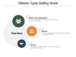 Different Types Staffing Model Ppt Powerpoint Presentation Gallery Example Cpb