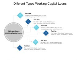 Different Types Working Capital Loans Ppt Powerpoint Presentation Layouts Layout Cpb