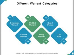 Different Warrant Categories Ppt Powerpoint Presentation File Icon