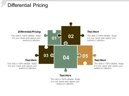 Differential Pricing Ppt Powerpoint Presentation Gallery Slides Cpb